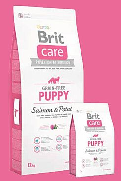 Brit Care Dog Grain-free Puppy Salmon & Potato 2x12kg+DOPRAVA ZDARMA+SNACKS!