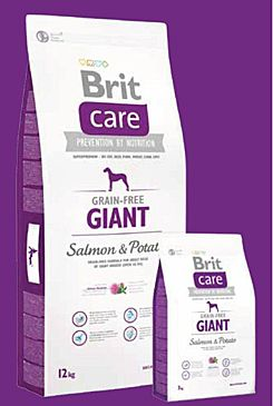 Brit Care Dog Grain-free Giant Salmon & Potato 3x12kg+DOPRAVA ZDARMA+SNACKS!