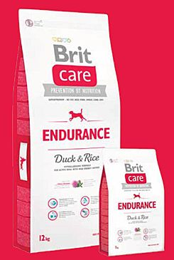 Brit Care Dog Endurance 3x12kg+DOPRAVA ZDARMA+SNACKS!