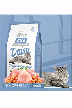 Brit Care Cat Daisy I´ve to control my Weight 2x7kg