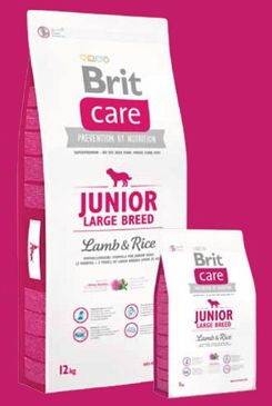 Brit Care Dog Junior Large Breed Lamb & Rice 12kg+DOPRAVA ZDARMA+SNACKS!
